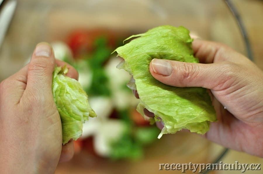 Zeleninový salát s mozzarellou a opečeným lilkem - trháme