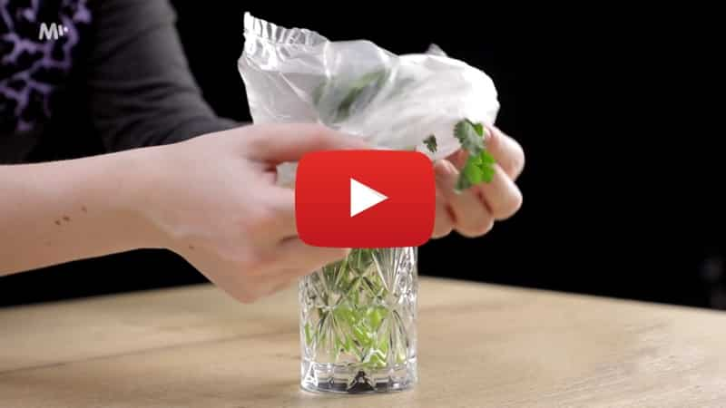 Přehrát video jak skladovat bylinky aby zůstaly čerstvé a voňavé?